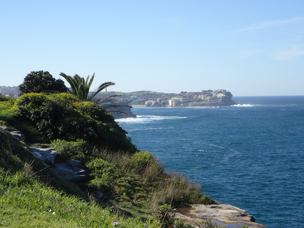 Coogee Coastal Walk